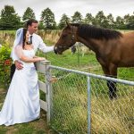 Bride and groom take a break from their wedding to get a photo with horses in a paddock