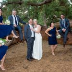 Hagley Park photo of the bridal party sitting and standing in front of a large pine tree branch