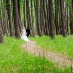 Hammer forest photo of the bride and groom walking through beautiful bare trunk trees