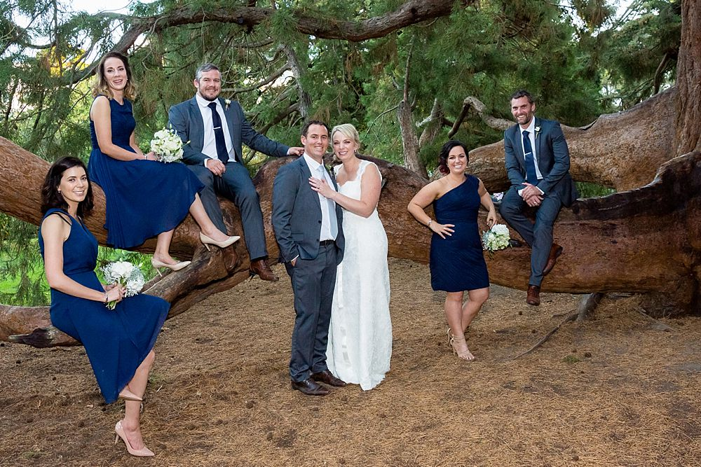 The Gym Art Centre Wedding-bridal party in front of popular large tree in Botanical Gardens-Christchurch